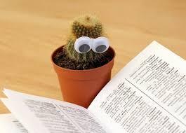 cactus reading